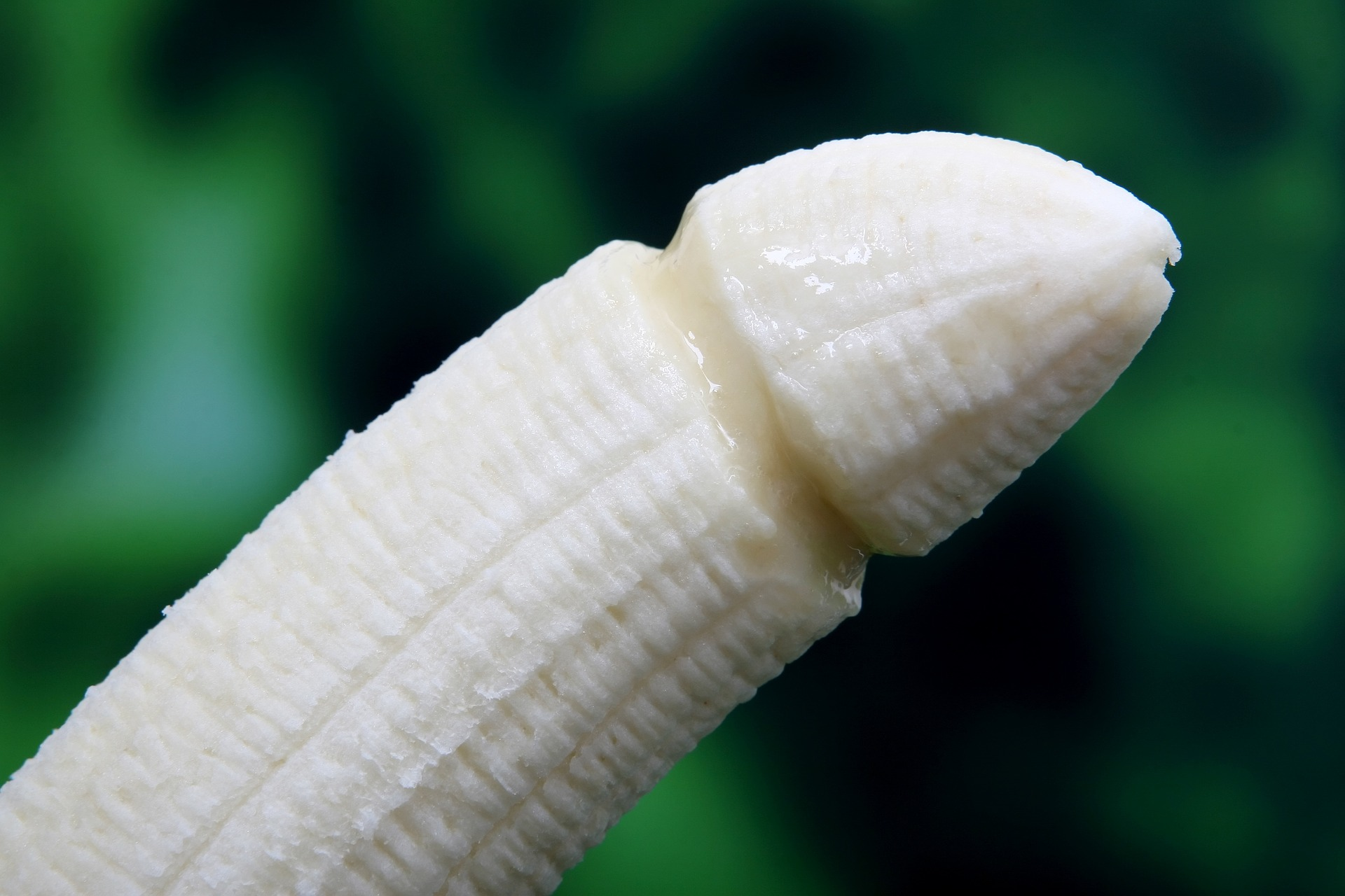 Kann man den Penis abbeißen?