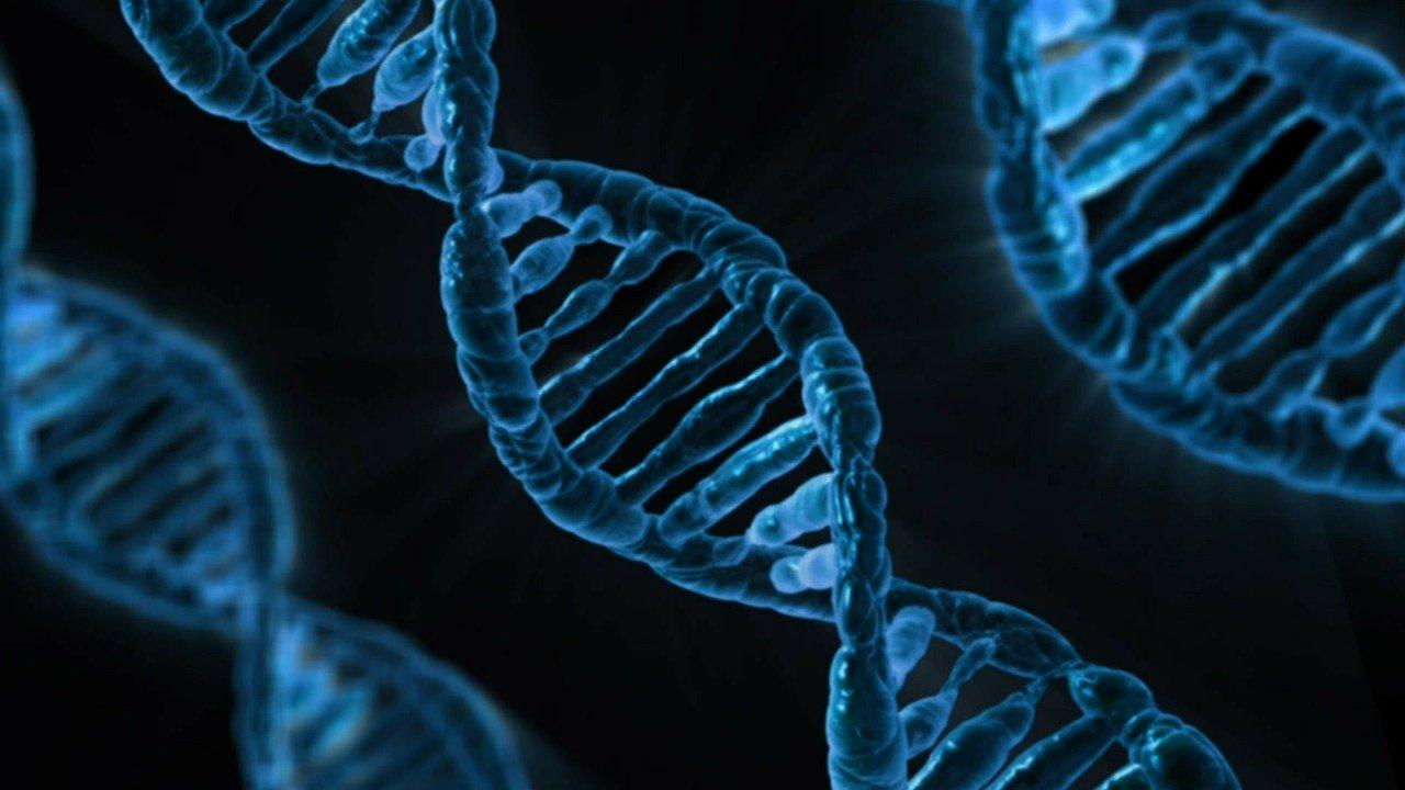 DNa-RNA